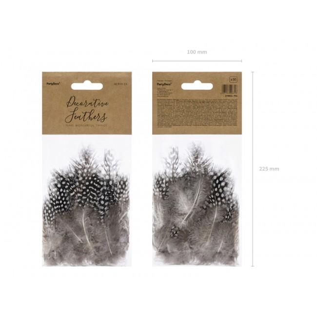 Okrasno perje, rjava, 5-9cm